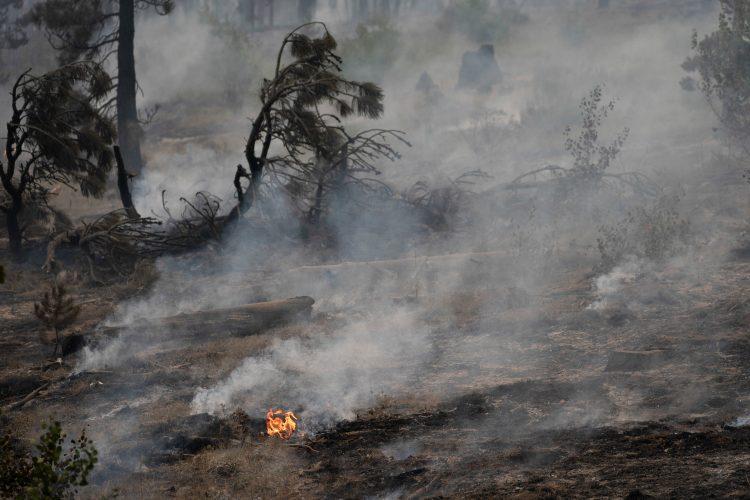 Požar v Oregonu