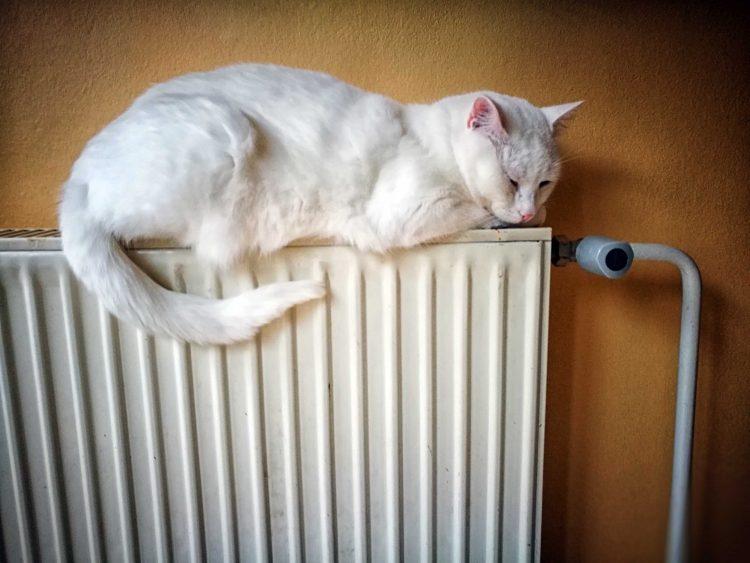 ogrevanje radiator plin elektrika