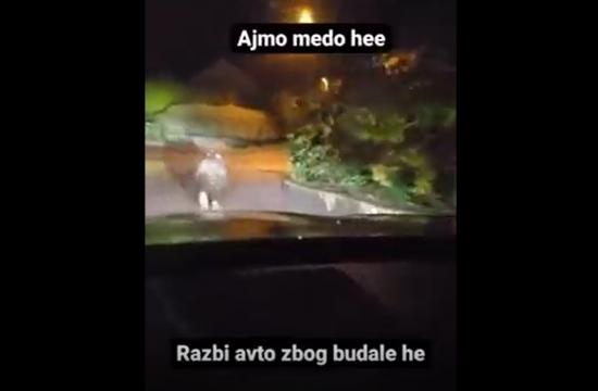 Medved-Avto